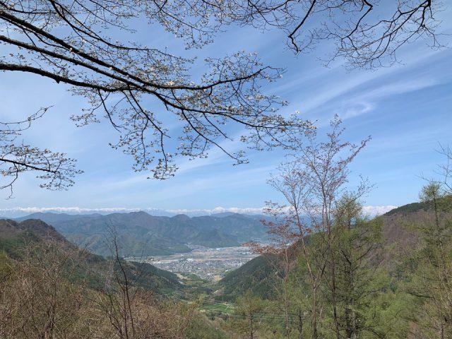 画像:太郎山清掃登山